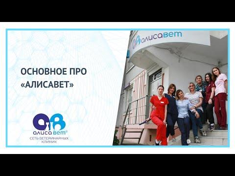 Вакансии ветврача в Москве - как выбираем мы