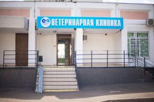Алисавет на Чоботовской 1
