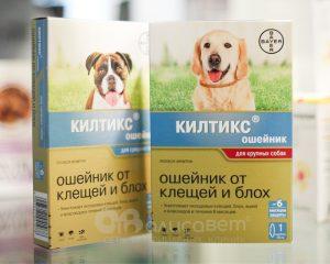 Килтикс для собак