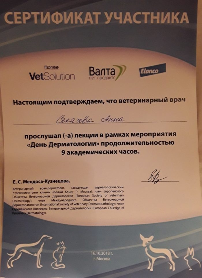 Ветеринар Секачева Анна Владимировна