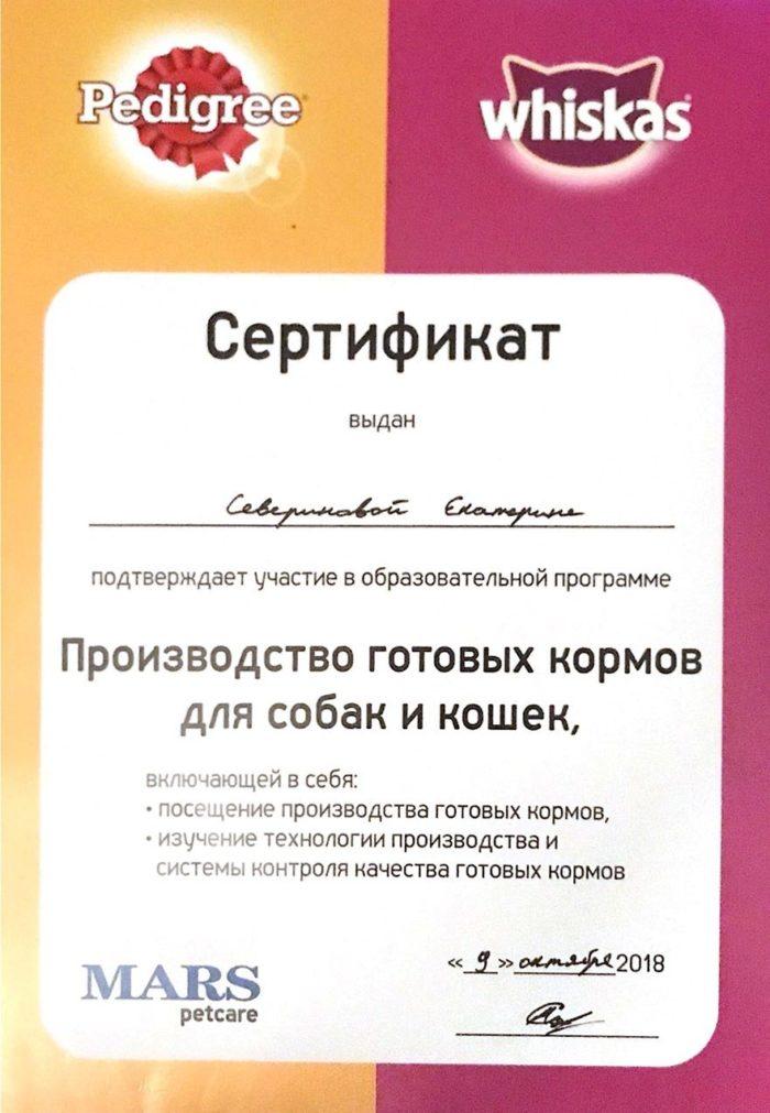 Ассистент ветврача Северинова Екатерина Алексеевна