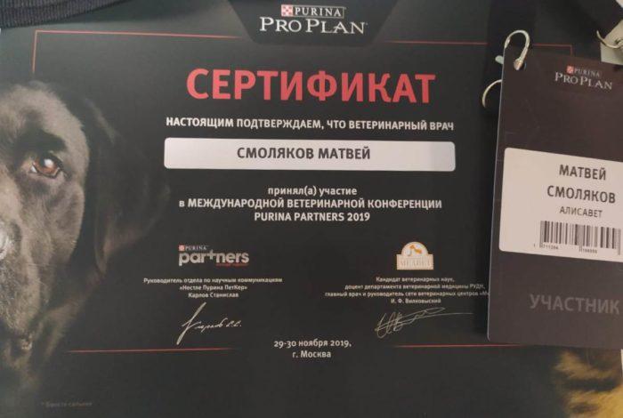 Ветеринар Смоляков Матвей Александрович