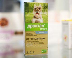Таблетки от глистов для собаки