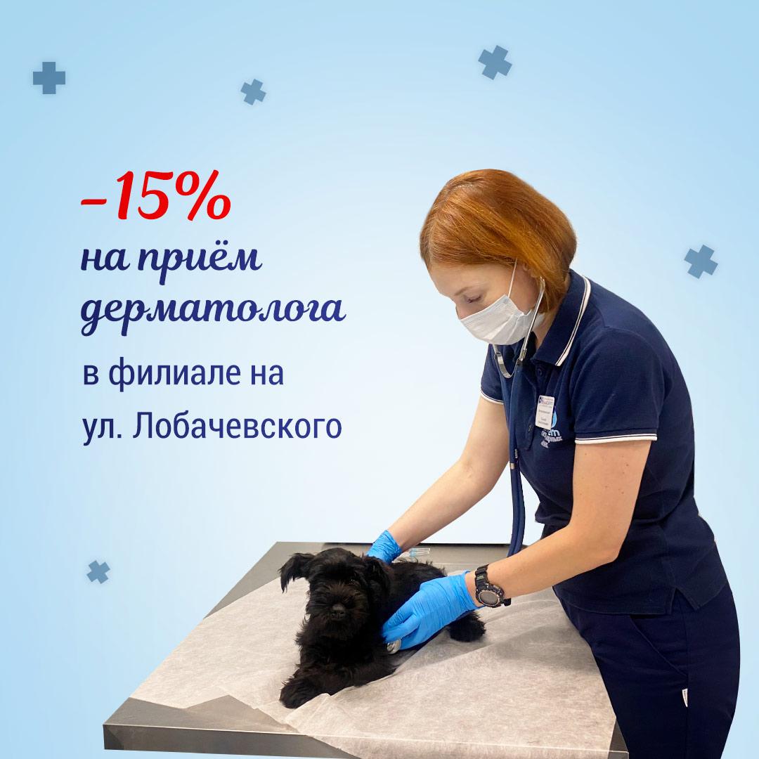 ветеринар дерматолог