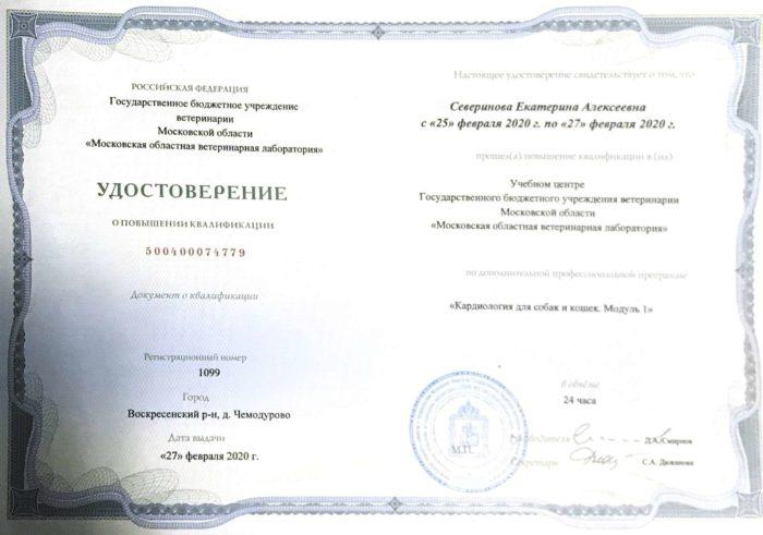 Ветеринар Северинова Екатерина Алексеевна