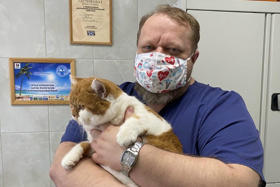ветеринар уролог