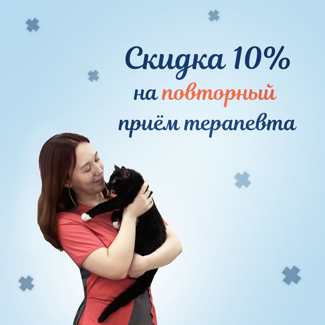 ветеринар терапевт